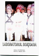 laboratorul-boisoara