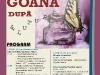 afis-goana-dp-fluturi-2013-web