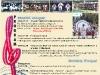 afis-canteceleoltului-2012-web_1