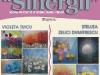 afis-expo-sinergii-2017web