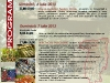 afis-sibiu-2013-web
